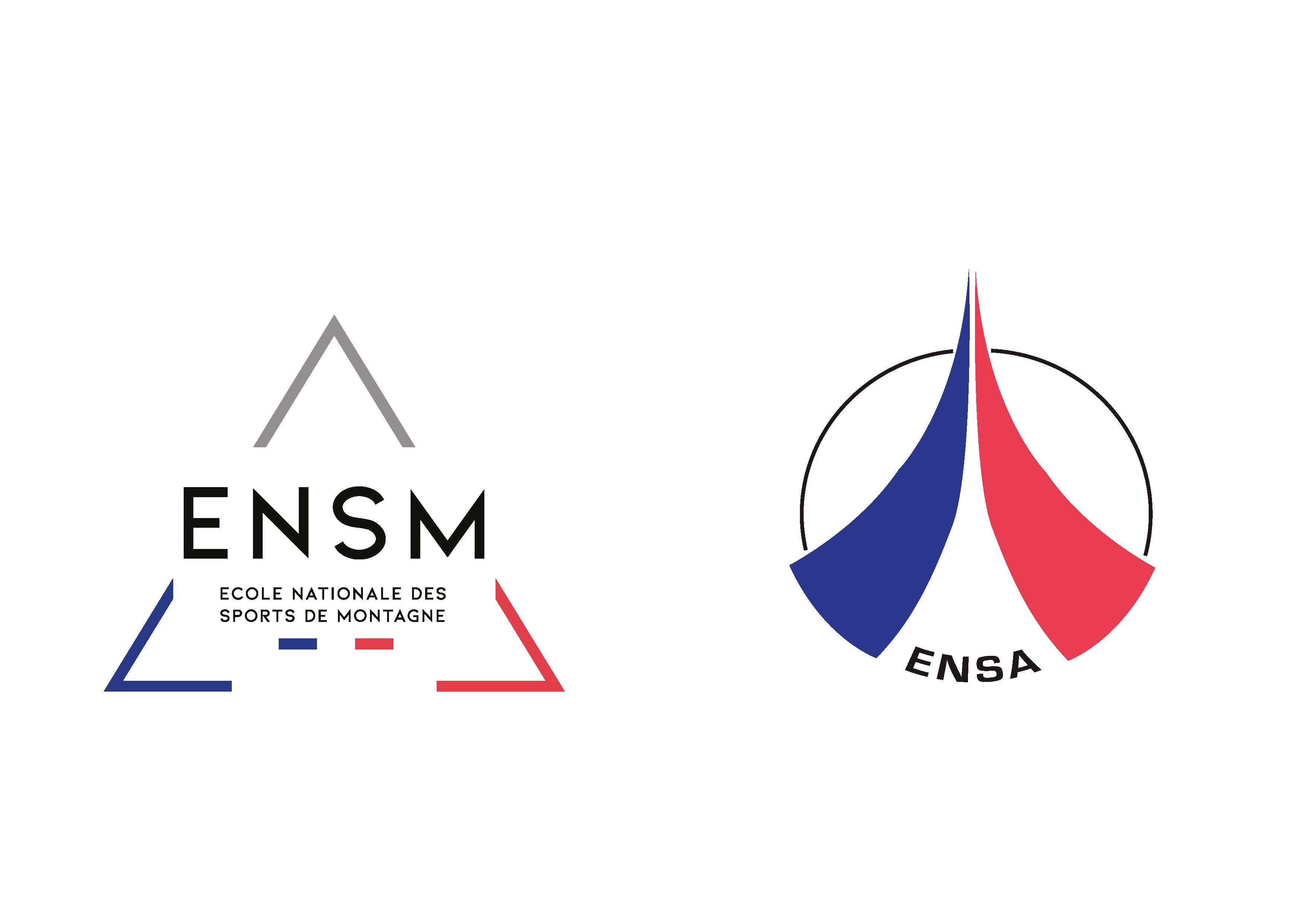 2021 ensm_ensa_logo_2021_Plan de travail 1